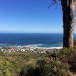 Pipe Track Jaimi Shields Rag and Bone Cape Town 6