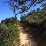 Pipe Track Jaimi Shields Rag and Bone Cape Town 9